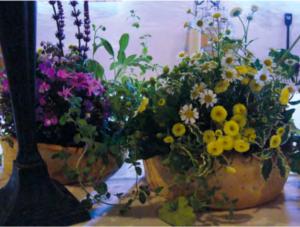 Fiori di città è allestimenti floreali per matrimoni green a Udine